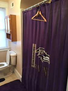 I'm a fan no matter how bad the team is doing, plus it would be hard to change shower curtains!